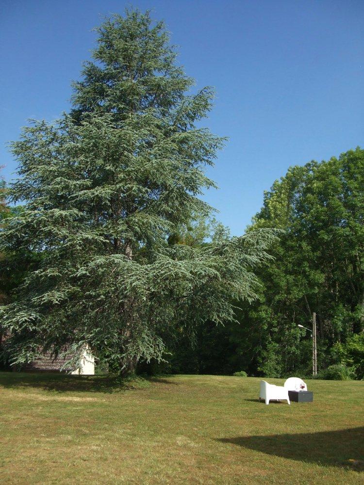 Aire camping-car à Montlay-en-Auxois (21210) - Photo 2